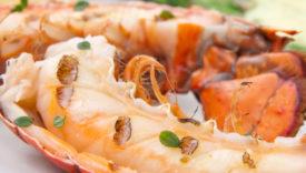 Aragosta in insalata