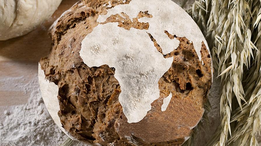 l-oro-dei-molini-dalla-terra-il-pane
