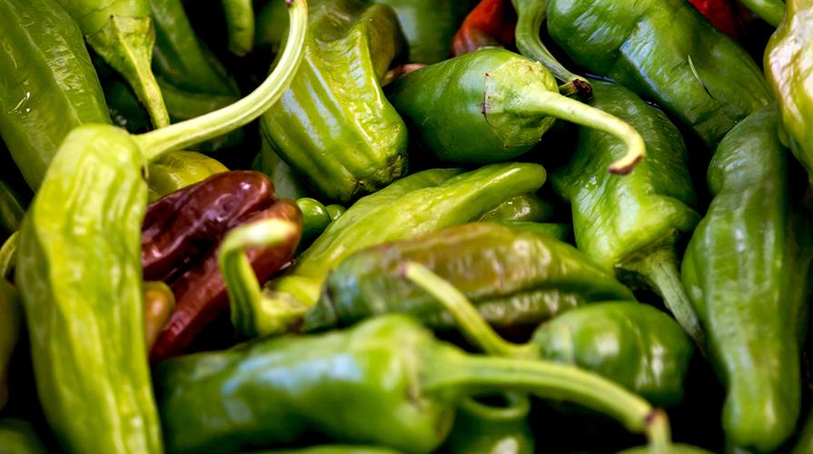 peperoncini-dolci-friggitelli-o-friarelli