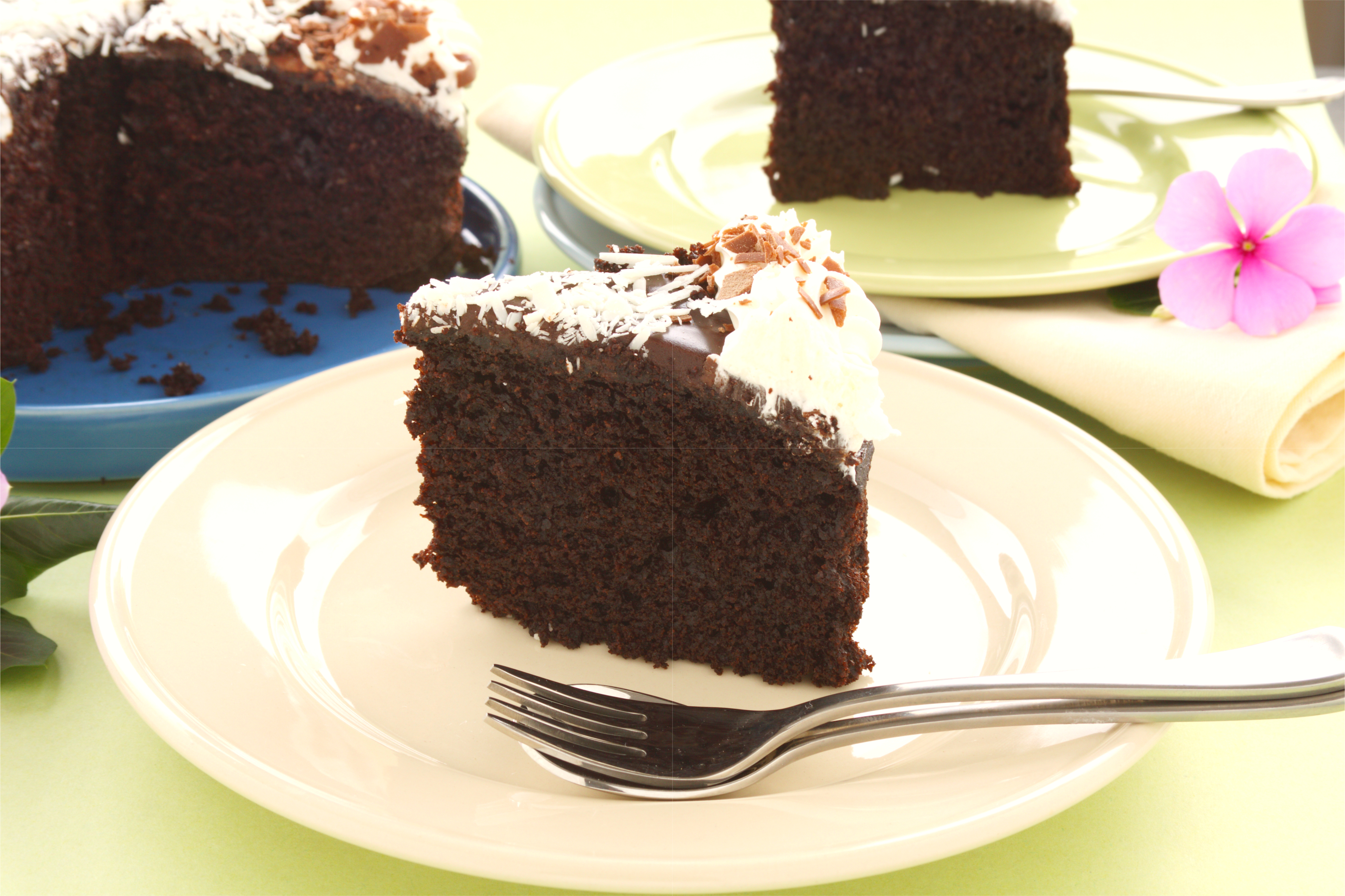 Mud cake o Torta Mississipi