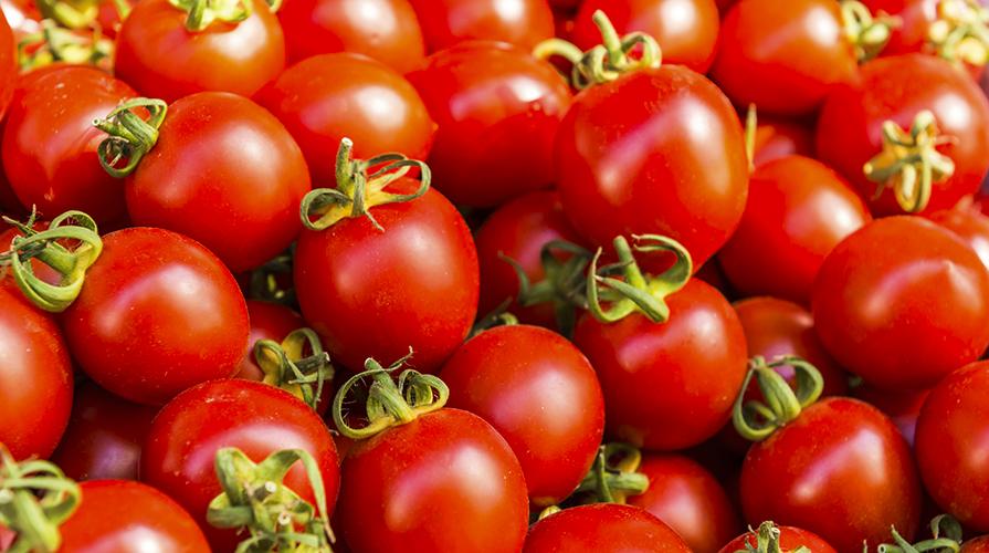 capunti-con-borlotti-cozze-e-pomodori-pachino