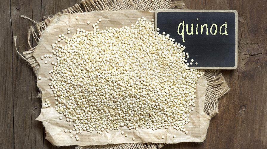 quinoa-peru-bolivia-equador