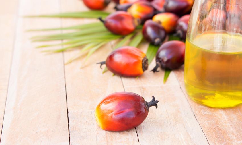 olio di palma prodotti senza