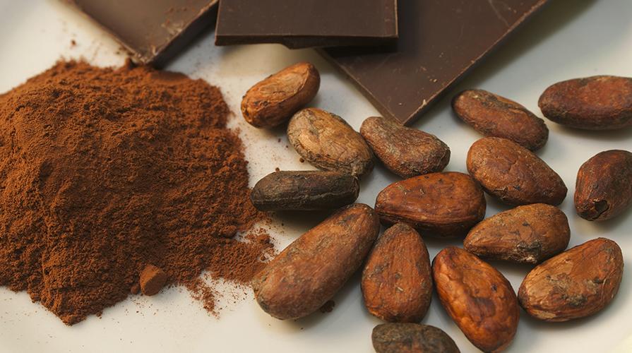 cacao per la memoria