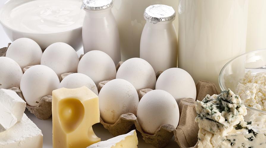 latte e formaggi per la memoria