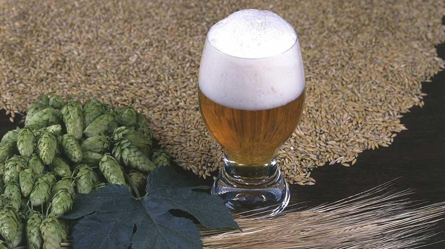 come fare la birra in casa