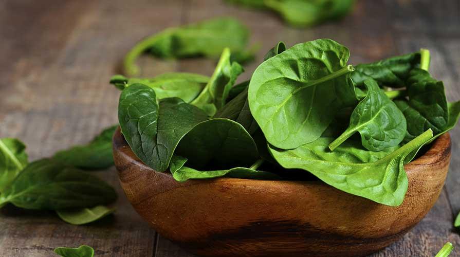 Gli spinaci contengono ferro