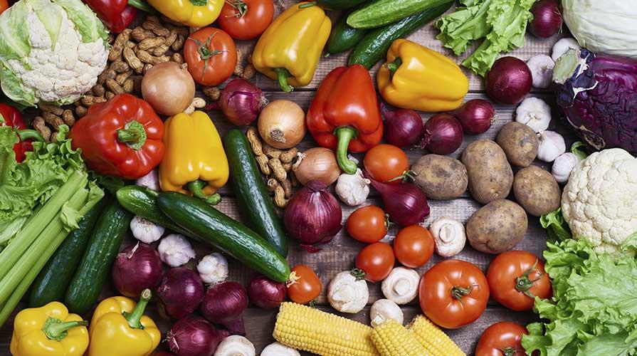 storia del vegetarianismo