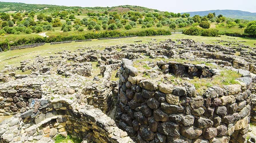 Vitigno più antico del Mediterraneo Occidentale