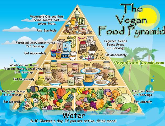 Dieta Vegan infografica