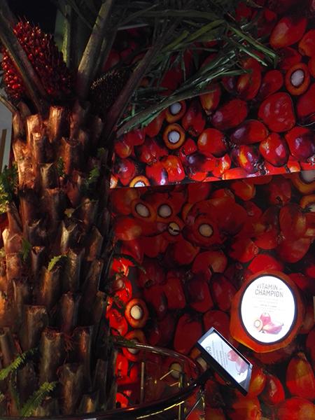 Padiglione Malaysia olio di palma
