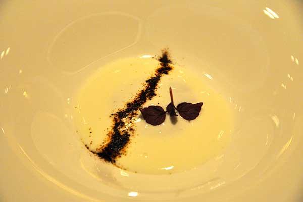 Davide Palluda, yogurt
