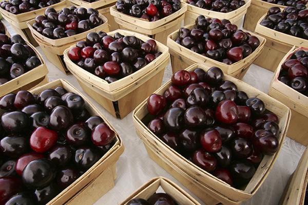 Cestini di ciliegie