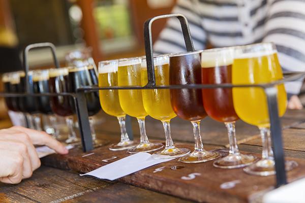 Conoscere birra online