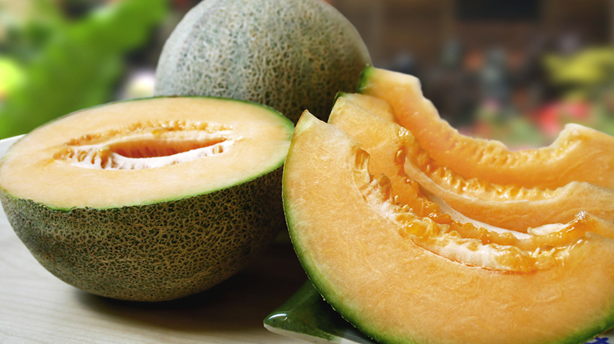 Ricette con il Melone