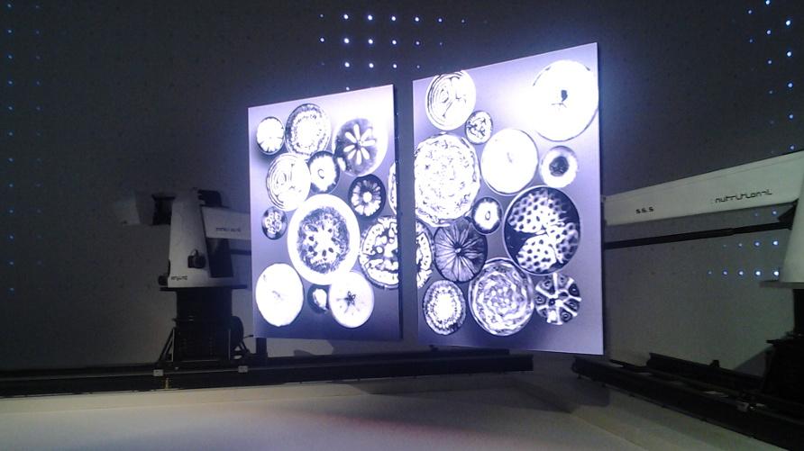 Expo Milano padiglioni tecnologici