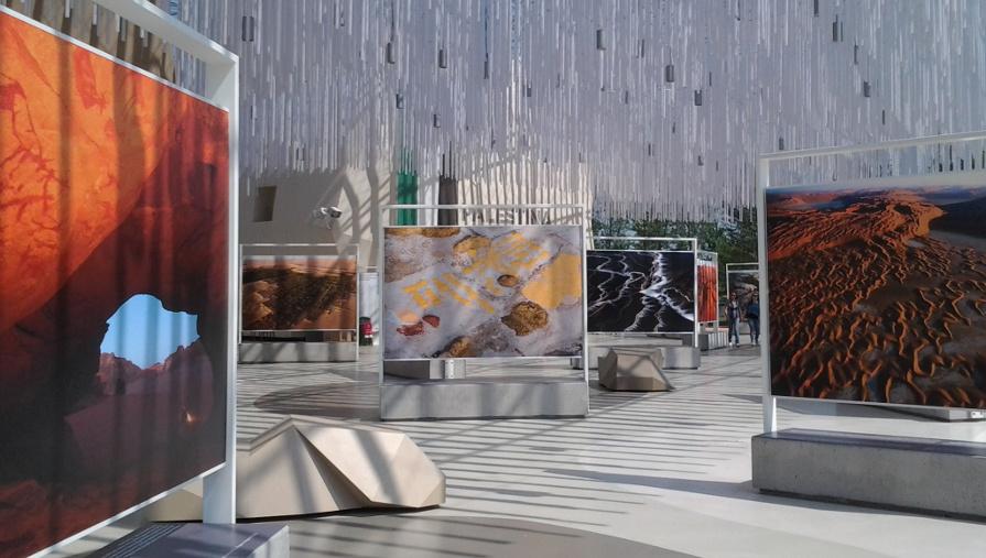 Expo Arte Steinmetz
