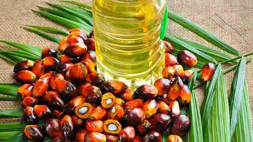 Campagna contro olio di palma