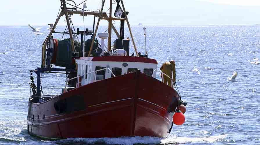 Fermo Pesca 2015