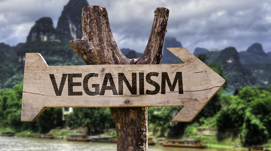 Curiosità su Vegani e Vegetariani