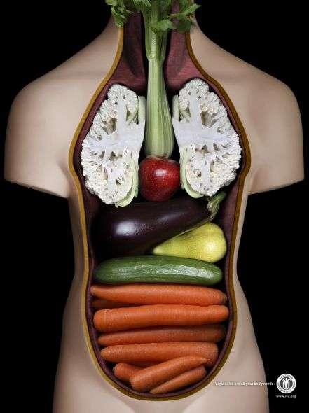 pubblicità vegane