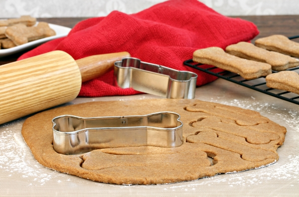 biscotti per cani fatti in casa