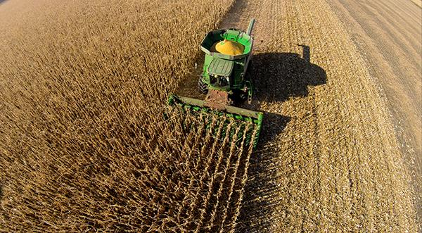 Agricoltura sviluppo