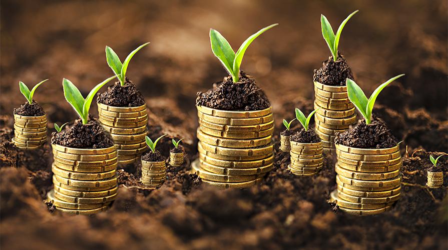Fondi Europei agricoltura