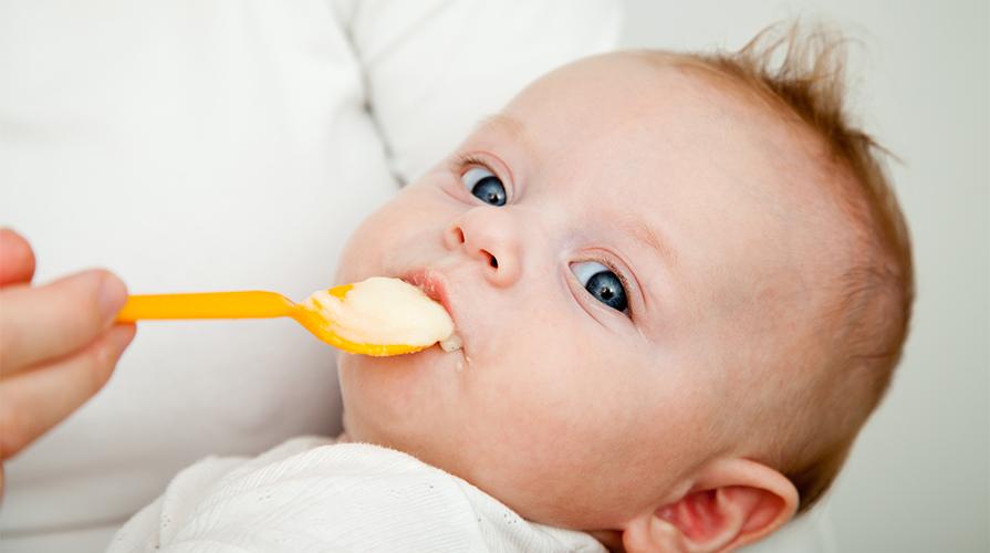 Alimenti ogm neonati