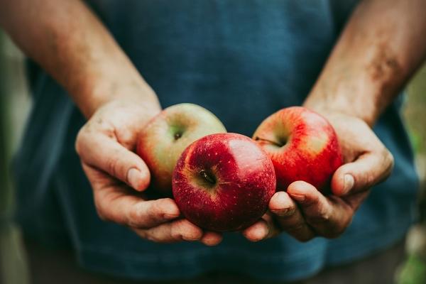 frutta fa bene
