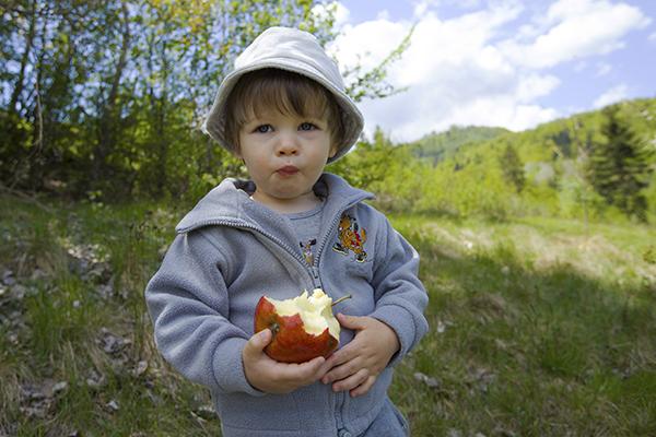 Spuntino frutta montagna