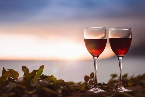 vino marche