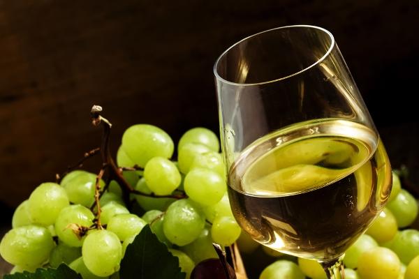 vino naturale marche