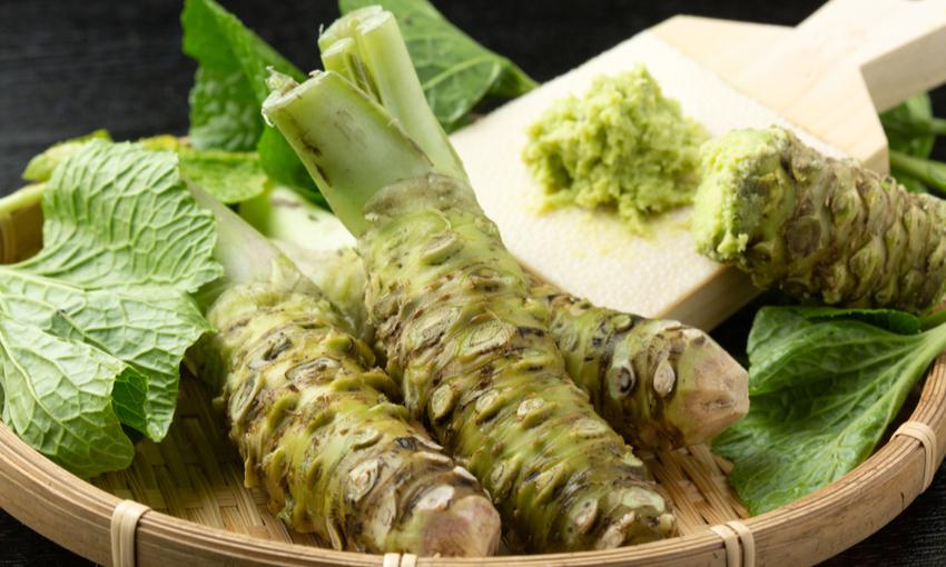 radice wasabia wasabi