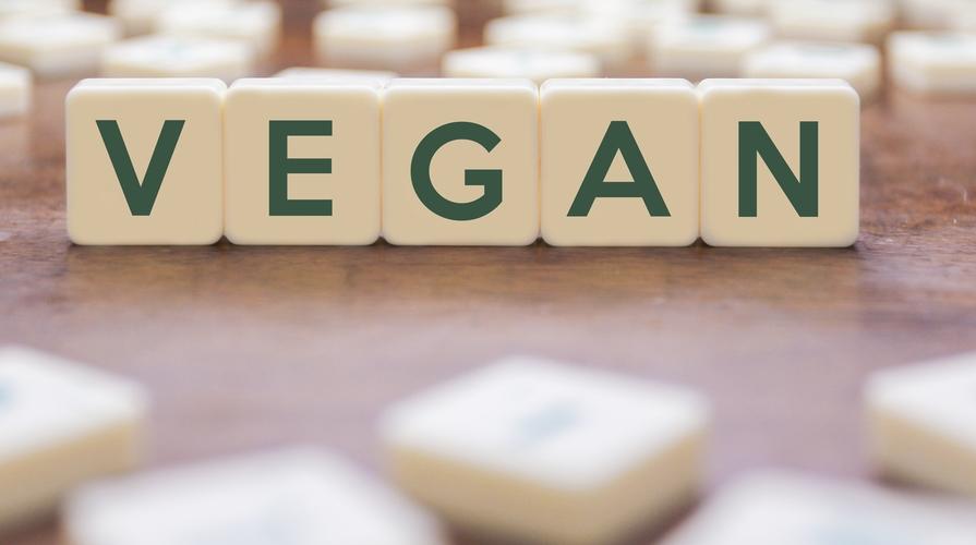 vegano definizione