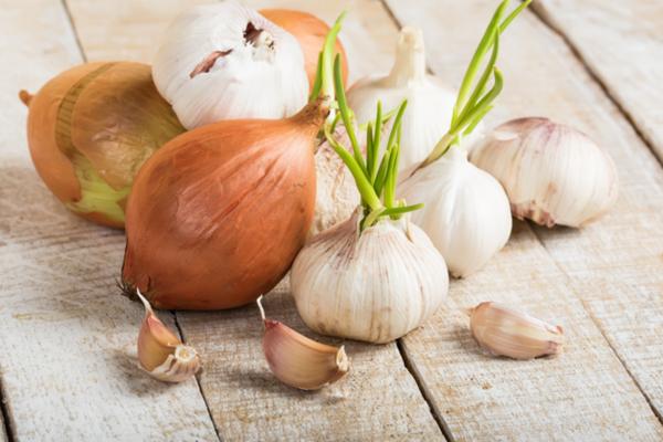 cipolle aglio allattamento