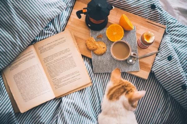 libri da leggere a colazione