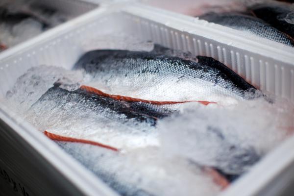 comprare il pesce