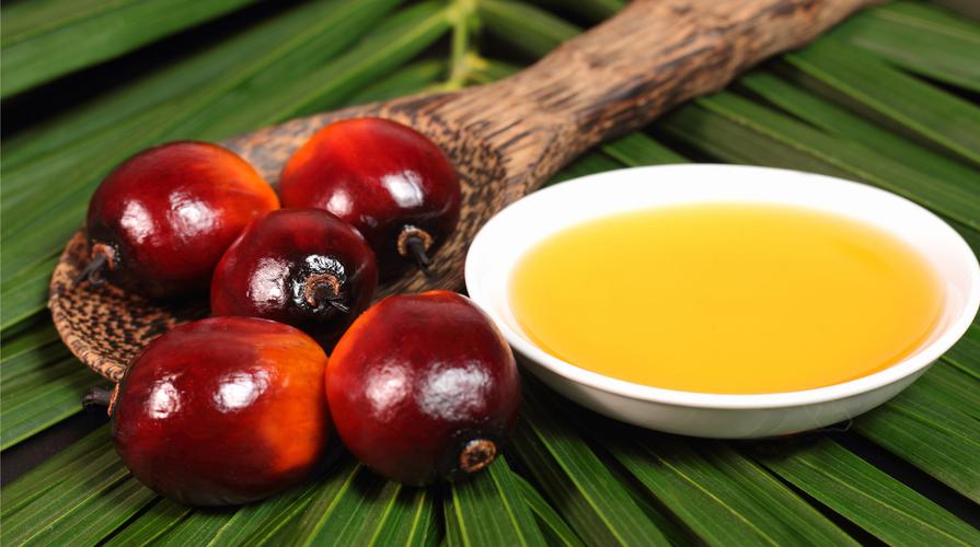 olio di palma caso mediatico