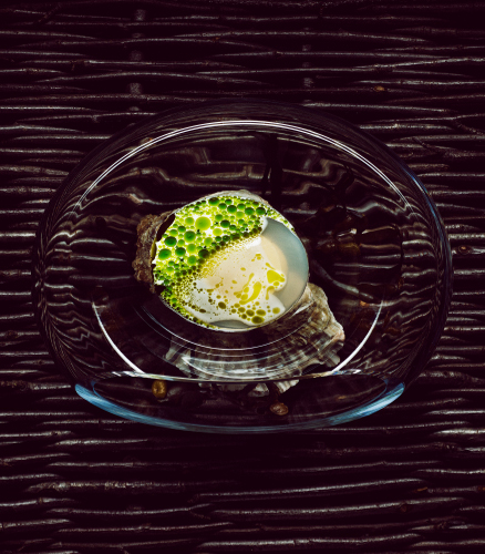 maaemo__Norwegian oysters with mussels and dill_credit Tuuka Koski