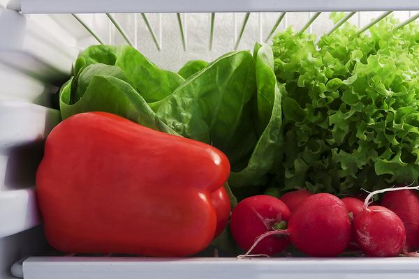 verdura frigorifero