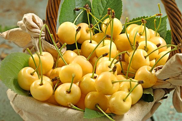 ciliegie bianche