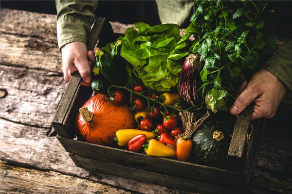 legge agricoltura biologica