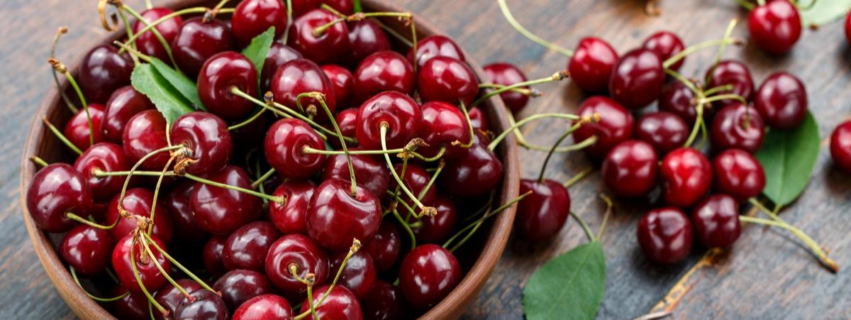 ciliegia varietà