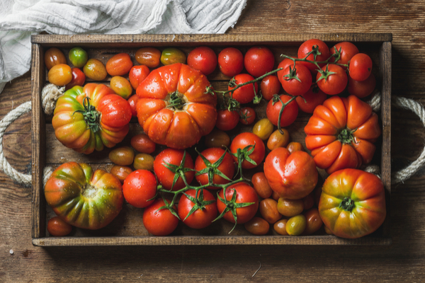 pomodori varianti