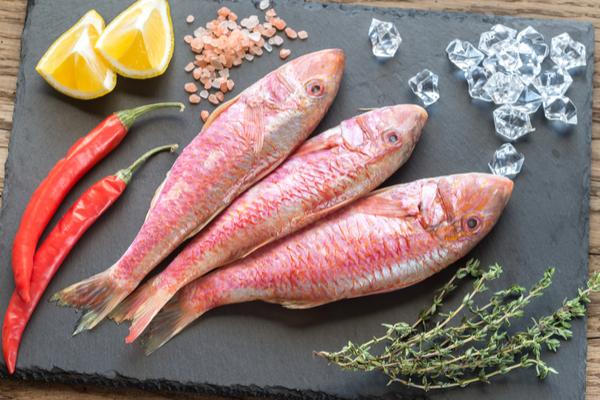 lista alimenti omega 6