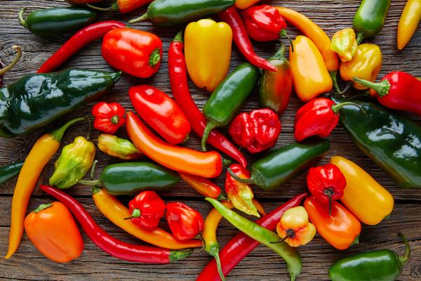 Cucinare i peperoni le variet e le ricette per portarli in tavola - Cucinare i peperoni ...