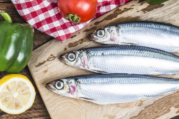 sardine proteine