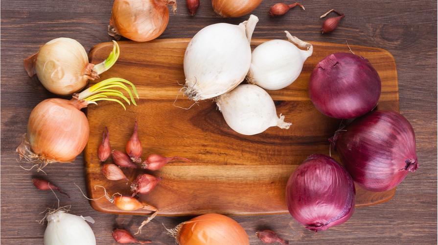 ricette con cipolle