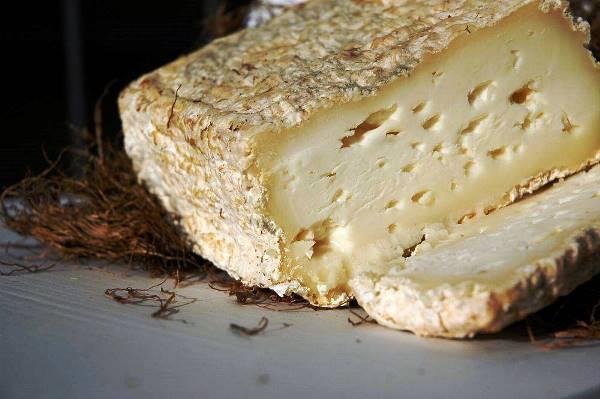 caciofiore cheese 2017